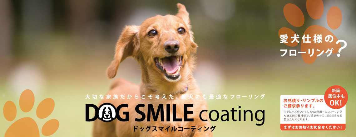 DOG SMILE COATING